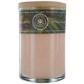 Coconut Soy Candle 12 oz Tumbler. A Warm & Welcoming Blend With Tiger Eye Gemstone. Burns Approx. 30+ Hours for unisex