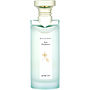 BVLGARI GREEN TEA Fragrance Autor: Bvlgari #243138